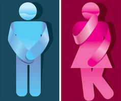 讲座报名 | 如何构建一个性别友善的社会?